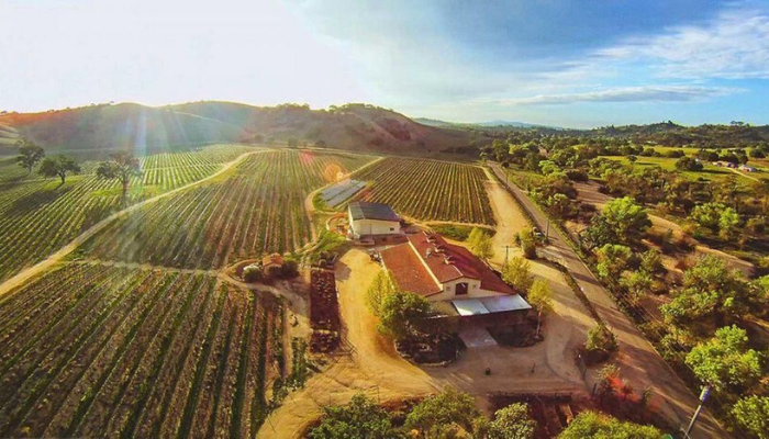 wineries in paso robles for a wine tour